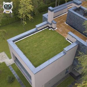 Експлуатована зелена покрівля: Чи є життя на даху?